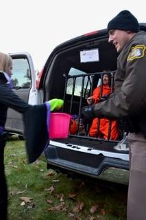 Trunk or Treat 45